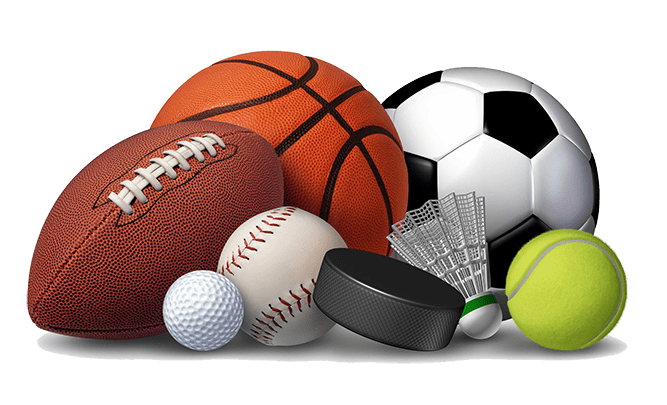 Online Free Sport Items Renting Scheduling Software Sport